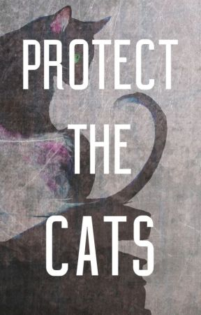 What is #ProtectTheCats? by ProtectTheCats
