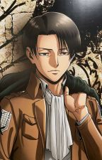 Levi x Reader Short Stories by PocketSizedMochi