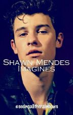 Shawn Mendes Imagines by seeingalltherainbows