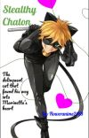 Stealthy Chaton | MariChat  cover