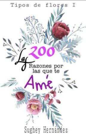 200 Razones por las que te Amé by 1Su987