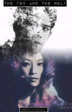 The Fox and The Wolf (Teen Wolf Gif Series Imagines) by toms-holland