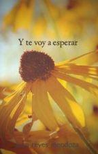 Y te voy a esperar by juan_reyes_mendoza