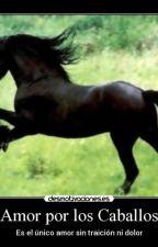 Caballos, Equitación. Mi pasión by DaeneraTargaryen