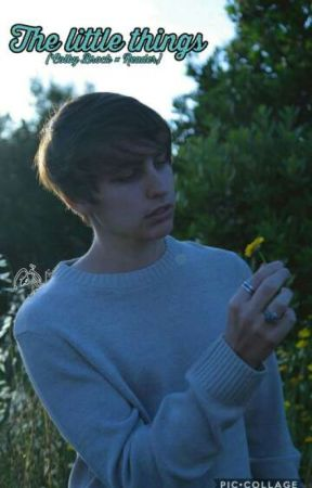 The Little Things (Colby Brock x Reader) [DISCONTINUED] by Mika_Airax