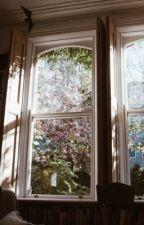flowers // phan au by snazzylester