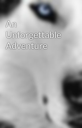 An Unforgettable Adventure by white_lotus7