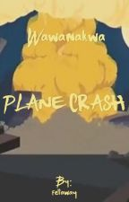 Wawanakwa Plane Crash by fellaway