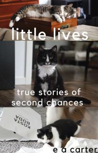 little lives - true stories of second chances cover