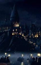 Scamander:  The Sorcerer's Stone by Madigan-Scamander