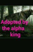 Adopted by the alpha king  by Daniel355