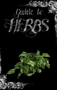 My Guide to Herbs cover