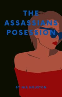 The Assassins Possession cover