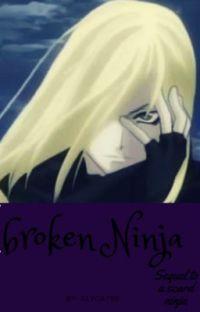 Broken ninja cover