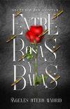 Entre Rosas Y Balas. cover