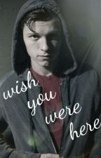 Wish You Were Here (Spider-man/Peter parker x Reader) by PiperTink13