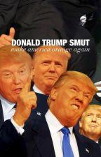 Donald Trump Smut SEQUEL by aquateens