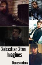 Sebastian Stan Imagines by Danosaurious