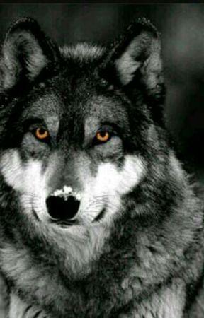 the lone wolf here  by LittleEmoDork
