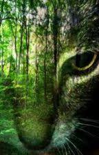 The Darkest Night: A Warriors Fanfiction by sierra-writes