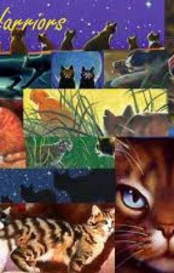 Warrior Cats Lannguage Guide