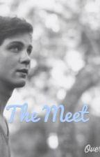 The Meet {Logan Lerman AU} by Xsad_little_mermaidX
