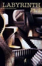 Labyrinth Pt. II by toribookworm1