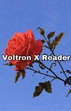 |Voltron x Reader Oneshots|!!ON HIATUS FOREVER!!| by ElizabethBarnes_
