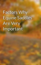 Factors Why Equine Saddles Are Very Important by leaf33marty