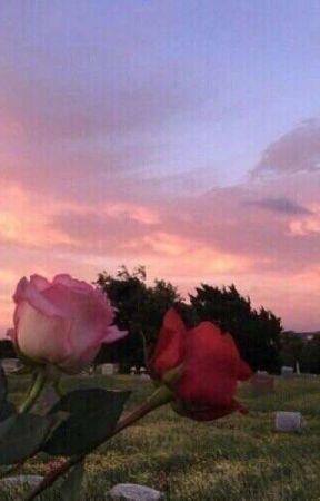 : rosey compliments by -jacksonkrecioch