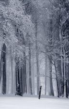 Companion (Elder Scrolls V: Skyrim Fanfiction) by WinterDrake