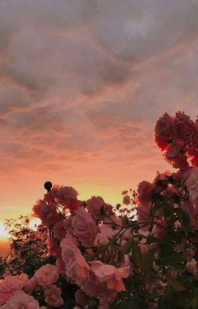 : pink dreams by -jacksonkrecioch