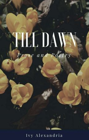 Till Dawn by ivyfollowsthesun