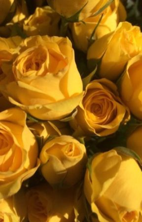 amor amarillo by TheLifeOfMely