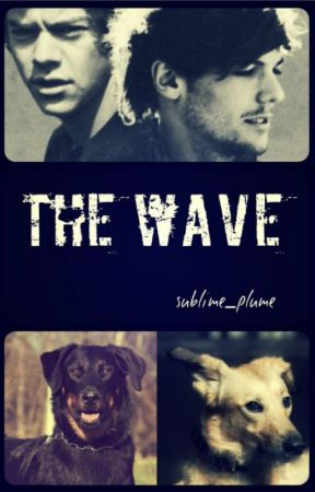 My Wave (Tome 2) by readeroflarry_