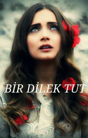BİR DİLEK TUT by sfkdemirci26