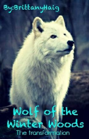 Wolf of the Winter Woods by HowlsMidnight