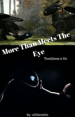 More Than Meets The Eye (Toothless X Oc) by o0Sterek0o