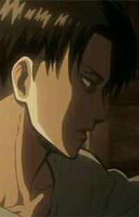 Levi x Reader Oneshots! (Smut (+18) in some!!) cover