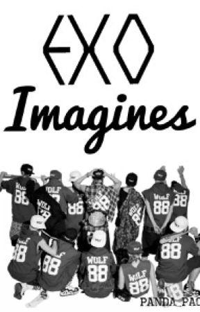EXO IMAGINES~ by panda_pao