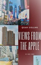 Views From The Apple/ My New York by Jay_Nique