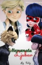 NEPOZNATA LJUBAV  (Miraculous Ladybug fanfiction) by TamaraTaky