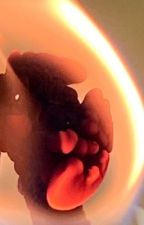 The unknown Gibbs daughter by ImpalaAllie
