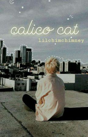 [allmin] calico cat by -lilchimchimney-