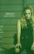 falcon [sara lance] by hoechlin72