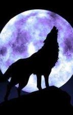 lobos y demonios by lectoracreativa24