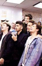 One Direction Preferences by 1DObessionPrefs