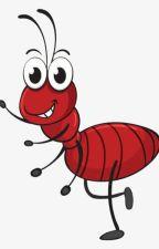 Historien om den lille søde myre by songodongo