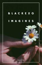 BLACKEXO Imagines [EXO & BLACKPINK] by sungrihyo