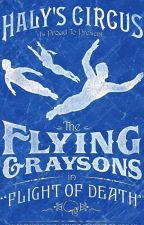 My Flying Grayson ( Grayson x Reader) (Editing ) by Batboys_Lover1939